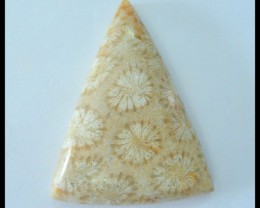 Natural Indonesian Coral Triangular Cabochon,47x36x9mm,91.5ct(17060311)