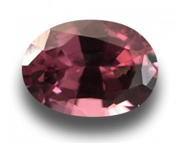 Natural Unheated Spinel|Loose Gemstone|Ceylon - NEW