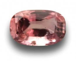 |Natural Padparadscha |Loose Gemstone|Certified| Sri Lanka