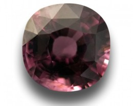 Natural Spinel|Loose Gemstone|Sri Lanka - New