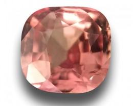 Natural Pink Orange sapphire |Loose Gemstone|New Certified| Sri Lanka