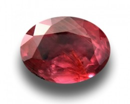 Natural Reddish Orange Sapphire | Loose Gemstone | Sri Lanka New