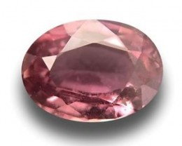 Natural Brown sapphire |Loose Gemstone|New| Sri Lanka