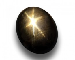 Natural Dark Black Star Sapphire |Loose Gemstone|Certified| Madagascar
