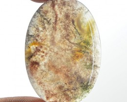 Genuine 28.00 Cts Moss Agate Cab