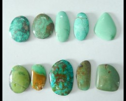 Sell 10pcs Natural Turquoise Freeform Cabochons,16x9x3mm,23x15x4mm,81ct(170