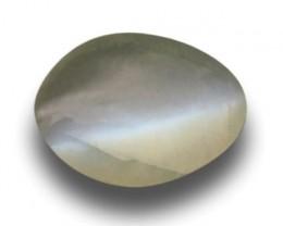 Natural Green Chrysobery cats eye|Loose Gemstone|Ceylon - NEW