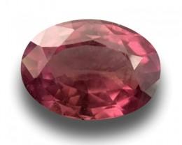 Natural Pinkish purple sapphire |Loose Gemstone|Certified| Sri Lanka