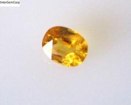 0.53cts Natural Australian Golden Sapphire Oval Shape