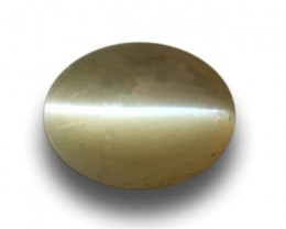 Natural Chrysoberyl cat's eye |Loose Gemstone|New| Sri Lanka