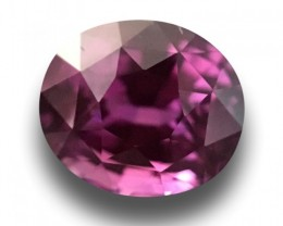 Natural violetish Pink Sapphire |Loose Gemstone|Certified| Sri Lanka