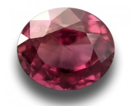 Natural Orangish Pink Sapphire|Loose Gemstone|New| Sri Lanka