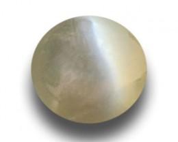 Natural Green Catseye |Loose Gemstone|New| Sri Lanka-ceylon