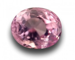 Natural Pink Sapphire |Certified | Loose Gemstone | - New