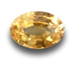 Natural Unheated Yellow Sapphire|Loose Gemstone| Ceylon - New