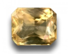 Natural Unheated Yellow Sapphire Loose Gemstone Sri Lanka