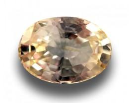 |Natural Yellow Sapphire|Loose Gemstone|New|Sri Lanka
