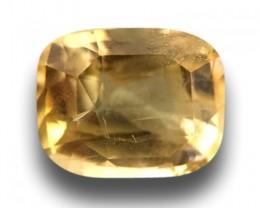 Natural Unheated Yellow Sapphire|Loose Gemstone|Ceylon - New