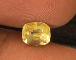 Natural Yellow Sapphire   Loose Gemstone   Sri Lanka - New