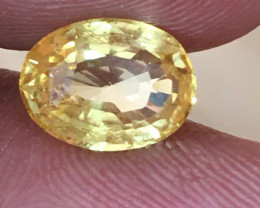 Natural Yellow Sapphire|Loose Gemstone|Certified|Ceylon - NEW