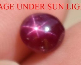 1.45 Ct Star Ruby CERTIFIED Natural UNHEATED Beautiful BLOOD RED