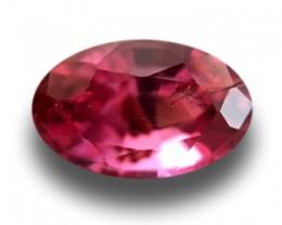 Natural Orange Pink sapphire  Loose Gemstone New  Sri Lanka