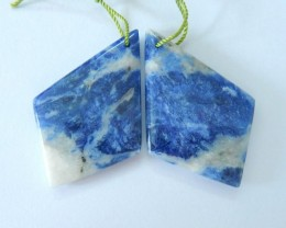 Hot Sell!Natural African Sodalite Earrings,38x24x5mm,48.35ct(17061512)