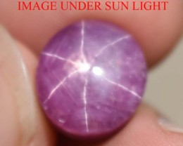 13.33 Ct Star Ruby CERTIFIED Beautiful Natural Unheated & Untreated