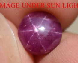 2.79 Ct Star Ruby CERTIFIED Beautiful Natural Unheated & Untreated