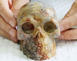 Large  Crazy agate Gemstone Skull  PPP 1333