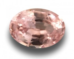 2.22 CTS | Natural Unheated Pink sapphire|Loose Gemstone|Certified|Ceylon-N