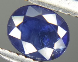 0.50 Crt Natural Sapphire Faceted Gemstone (M 38)