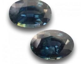 Natural Unheated Blue Pair Sapphire |Loose Gemstone|New| Sri Lan