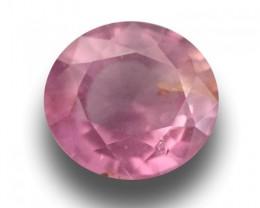 Natural Spinel |Loose Gemstone| Sri Lanka-New