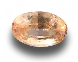 |Natural Unheated Padparadscha|Loose Gemstone| Sri Lanka-New
