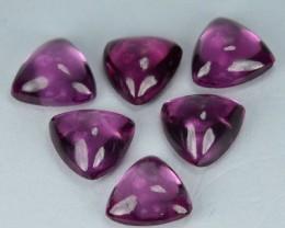 5.65 Cts Natural Pinkish Red Rhodolite Garnet Trillion Cabs 6 Pcs Parcel