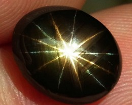 6.11 Carat 12 Ray Star Sapphire - Gorgeous