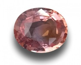 Natural Padparadscha |Loose Gemstone| Sri Lanka-New