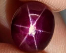 7.28 Carat Fiery Star Ruby - Gorgeous