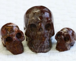Cute Jasper family Gemstone Skull  PPP 1349