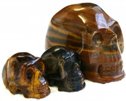Cute Tiger Eye family Gemstone Skull  PPP 1359