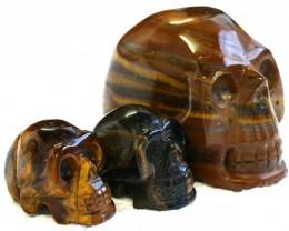 Cute Tiger Eye family Gemstone Skull  PPP 1359