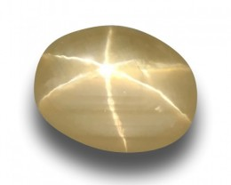 Natural Rare Yellow Star Sapphire |Loose Gemstone| Sri Lanka-New