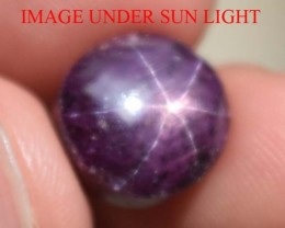 12.15Carats Star Ruby Beautiful Natural Unheated & Untreated