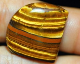 28.93ct Natural Golden Tiger Eye