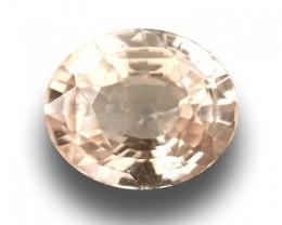 Natural Unheated Padparadsha  Loose Gemstone  Sri Lanka-New