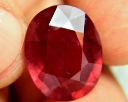 CERTIFIED - 18.22 Carat Fiery Ruby - Gorgeous