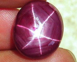 19.17 Carat Fiery Star Ruby - Gorgeous