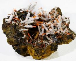 40Cts Nice Crocolite Specimen PL 1382