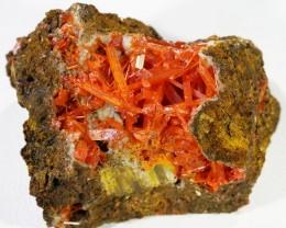 150Cts Nice Crocolite Specimen PL 1385